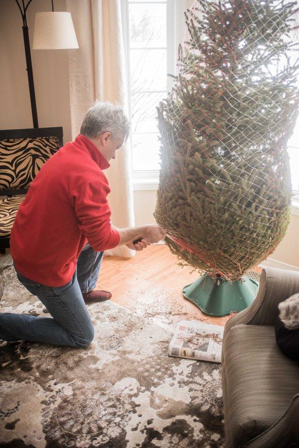 to-kill-a-christmas-tree-15