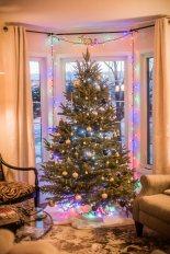 to-kill-a-christmas-tree-22