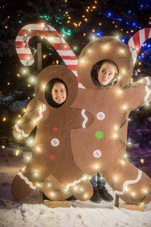 to-kill-a-christmas-tree-26