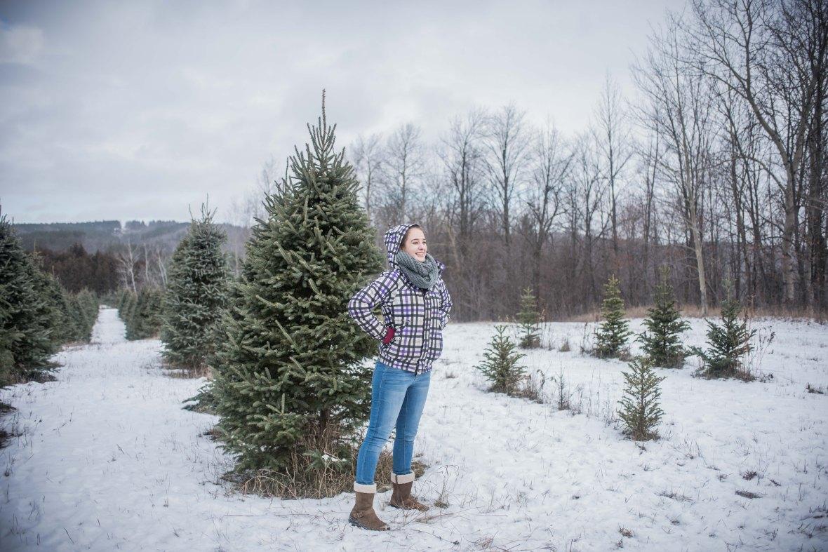 to-kill-a-christmas-tree-5