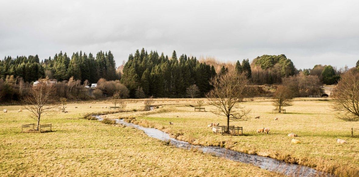lake-district-n-scotland-8