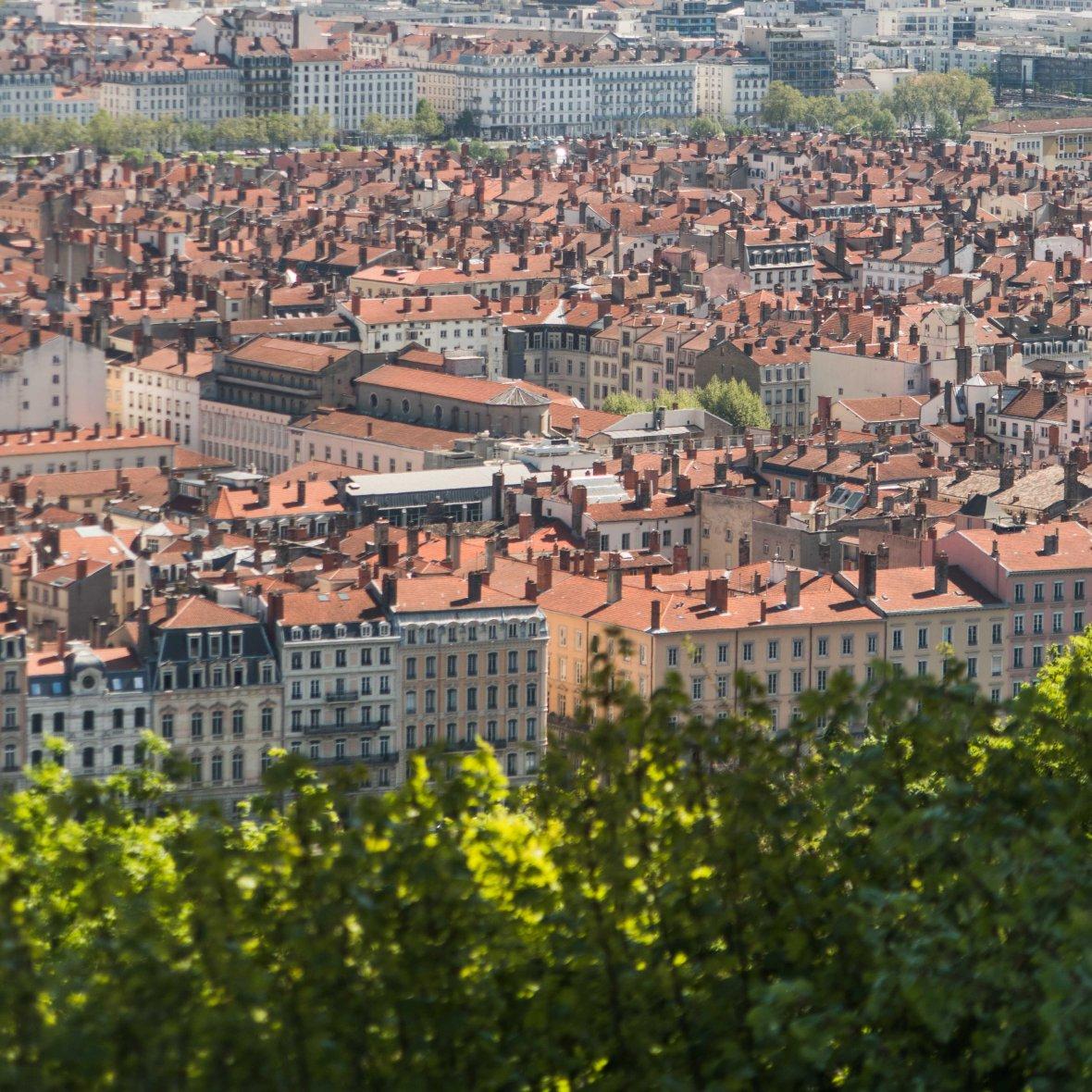 Exploring Lyon-8